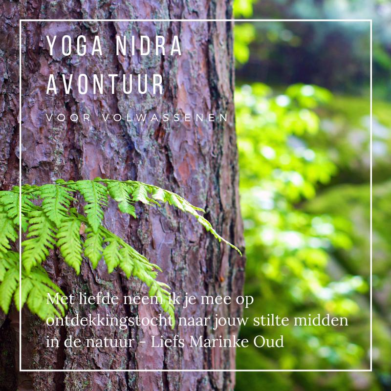 Yoga Nidra avontuur in de natuur